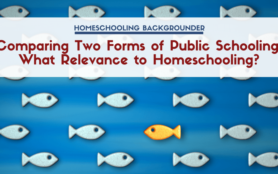 Comparing Two Forms of Public Schooling: What Relevance to Homeschooling?